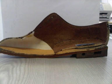 Shoe cross section